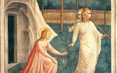 Homélie de la Vigile de Pâques